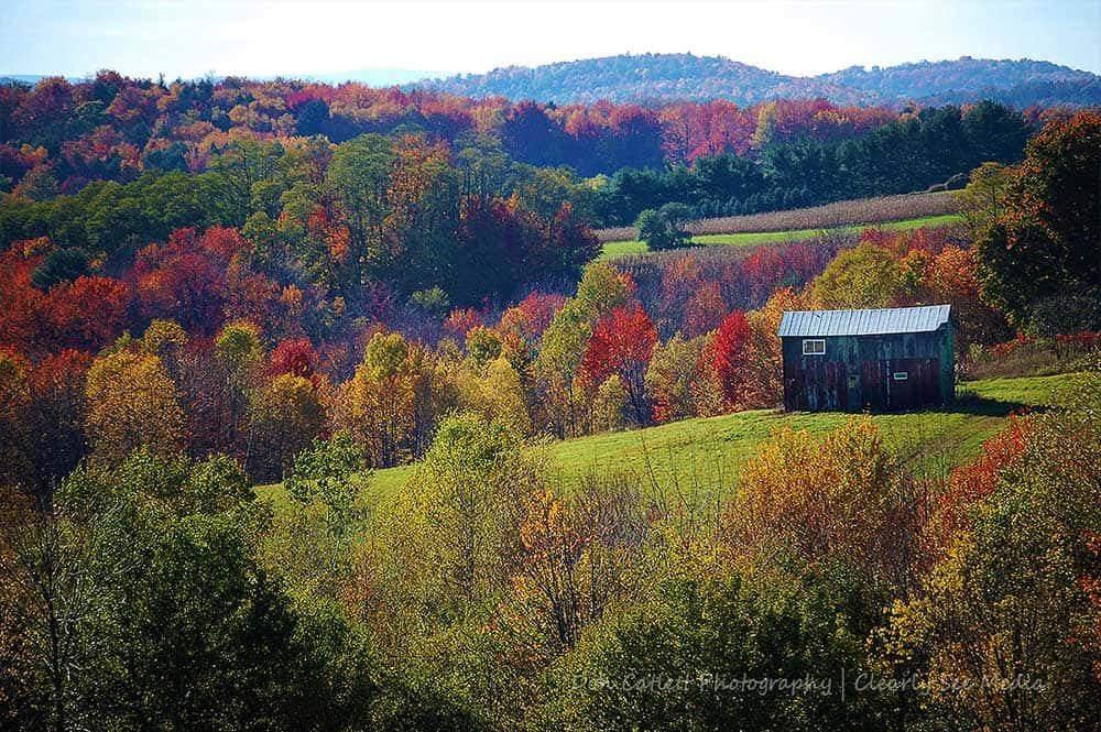 Fall-Hills-CLSEE
