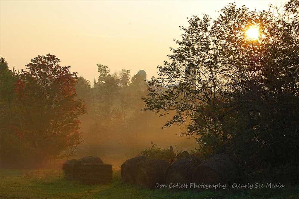Farm-Mist-CLSEE