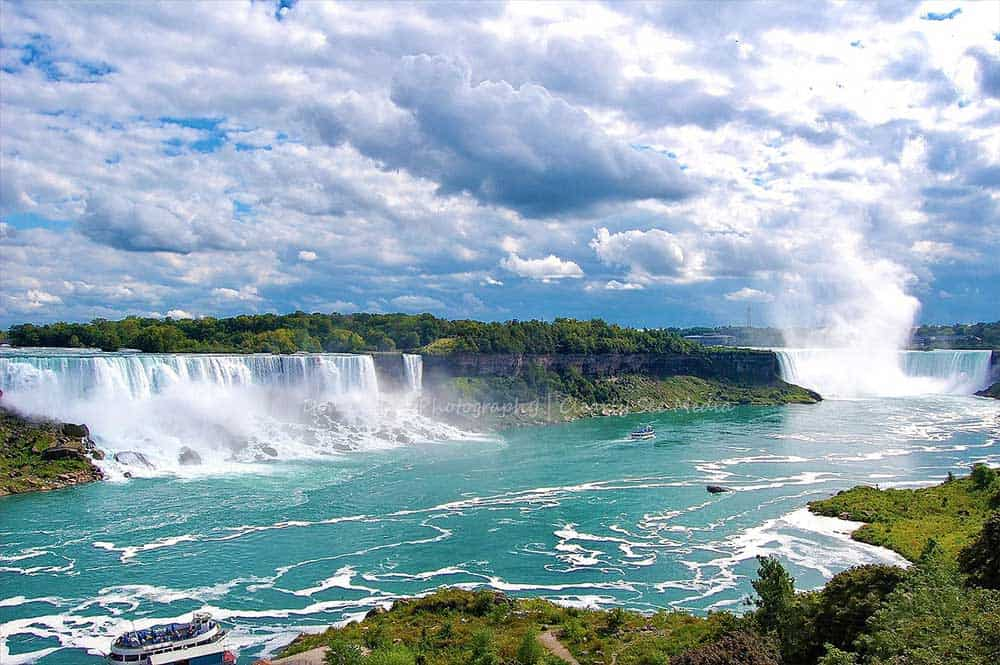 Niagra-CLSEE
