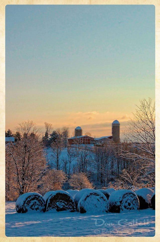 Winter-Farm